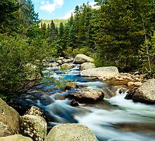 Rocky Mountain Stream by bengraham