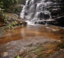 Sylvia falls Fern by STEPHEN GEORGIOU PHOTOGRAPHY