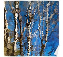 Aspen Tree Reflection Abstract Poster