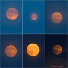 SuperMoon Collage by MarianBendeth