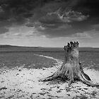 Landscape Africa by Wim De Wulf
