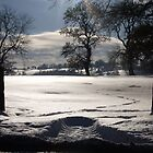 Snowed In by GreenPeak