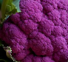 Purple Cauliflower by Michael Hadfield