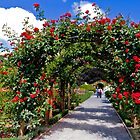 Rose Arch by Marylou Badeaux