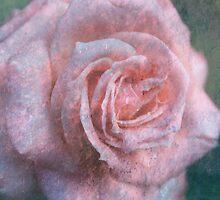 Vintage Rosa  - JUSTART © by JUSTART