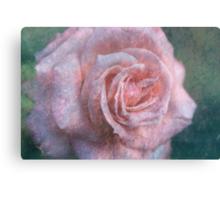 Vintage Rosa  - JUSTART © Canvas Print