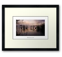 Willow New Growth, Petersfield Framed Print