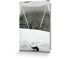 Slow snow removal Greeting Card