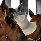 Cowboy by SuddenJim