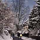 Flawil, Switzerland by Dania Reichmuth