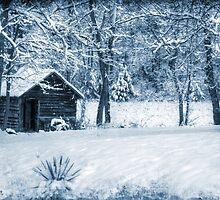 Blue Christmas by Christine Annas