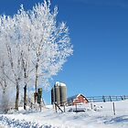 Frosty Iowa Farmstead by lorilee