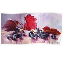 Blue Grape Poster