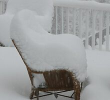 2009-2010  SNOWFALL BY MVISION PHOTOGRAPHY. by icesrun