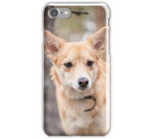 Portrait of a dog. iPhone Case/Skin