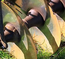 Blades by Renee D. Miranda