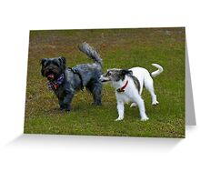 Who Let the Dogs Out? Greeting Card