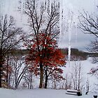 Winter View on Lake Mallalieu by Nora Caswell