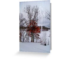Winter View on Lake Mallalieu Greeting Card