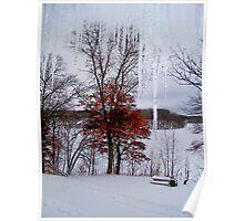 Winter View on Lake Mallalieu Poster