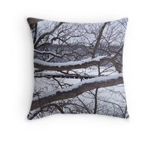 Looking Through The Icy Branches Throw Pillow