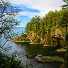 Cape Flattery by Barbara  Brown