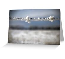 frost on barbed wire Greeting Card