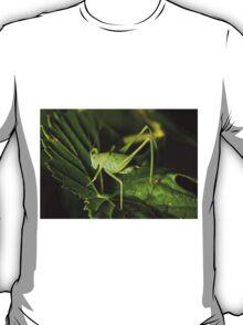 Grasshopper on a leaf T-Shirt