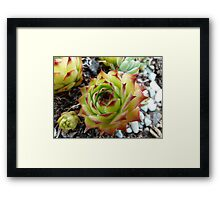 What do you call me? Framed Print