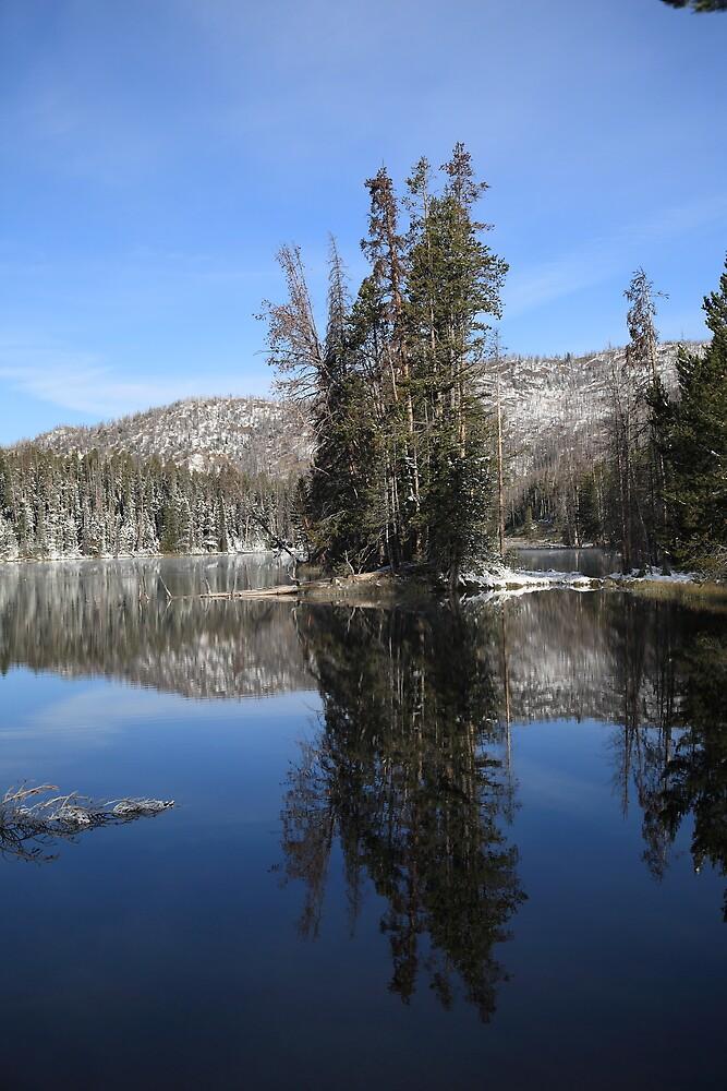 Yellowstone National Park - Lake by Frank Romeo