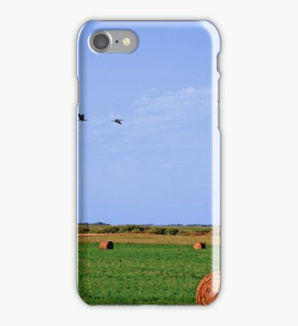 signs of fall iPhone Case/Skin