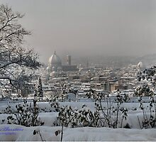 SNOW  IN  FLORENCE by ALCANTARA