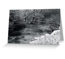 2010 river martin blarney Greeting Card