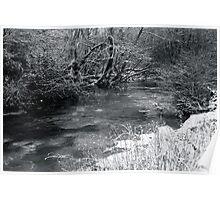 2010 river martin blarney Poster