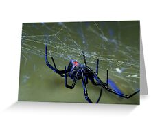black widow spider hanging on web Greeting Card