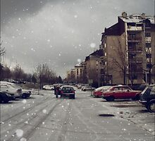 Winter again  by Metadea