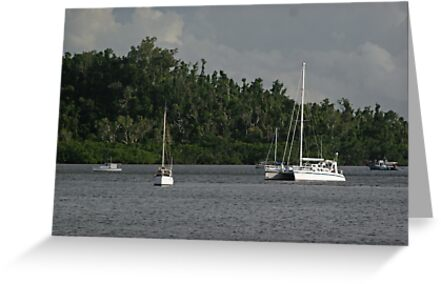 Boats Moored in Mourilyan Harbour by STHogan