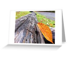 Fall Leaf on Log Greeting Card