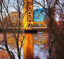 High Tide in Sacramento by Barbara  Brown