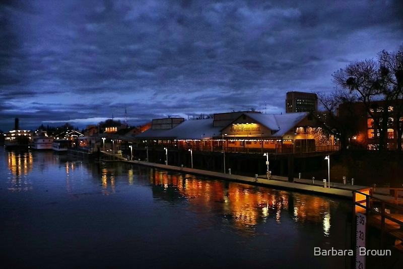 Sacramento River Rising by Barbara  Brown