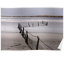 Lake Fowler Fence Poster