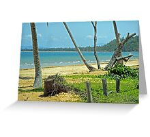 Tropical Tranquility at South Mission Beach Greeting Card