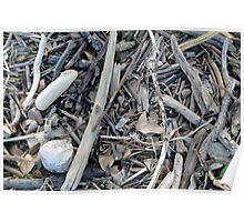 Beach junk Poster