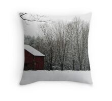 Barn Storm Throw Pillow