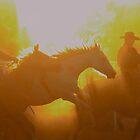 Rodeo by kurrawinya