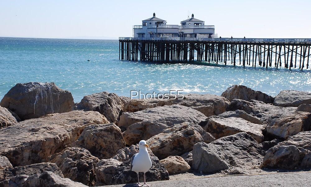 """""""Malibu Pier3"""" by Photos55"""