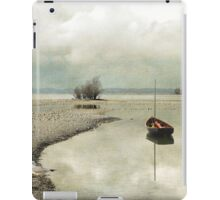 Winter Morning by the Lake iPad Case/Skin