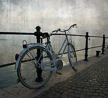 Bicicle on the lake by simia