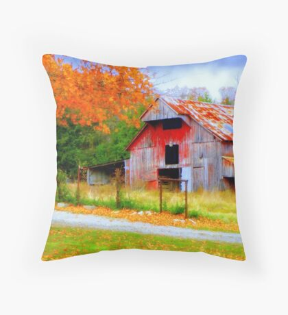 Painted By Nature, Aged By TIme Throw Pillow