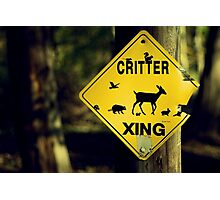 Critter Xing Photographic Print